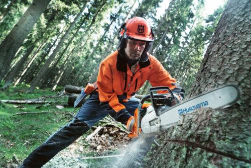 Lavorazione e taglio del legno